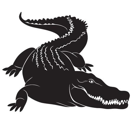 krokodil: Big Krokodil mit schrecklichen Eckz�hne Vektor-Bild
