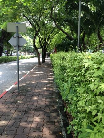 Sidewalk in school