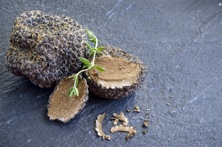 rare and expensive black truffle on a black background Stock Photo