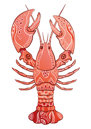 lobster dinner: Decorative isolated lobster. Vector illustration Illustration