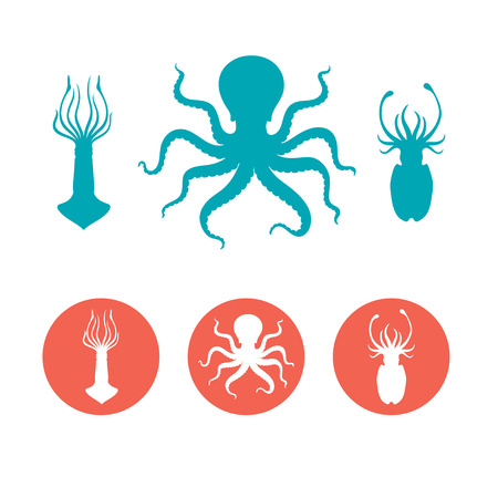 Set of the seafood flat icons. Octopus, squid and cuttlefish vector silhouettes Ilustrace