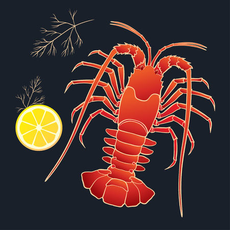 spiny: Crayfish with lemon and dill on the black background. Vector illustration