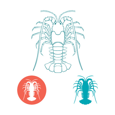 spiny lobster: Crayfish silhouette and flat icon. Vector illustration