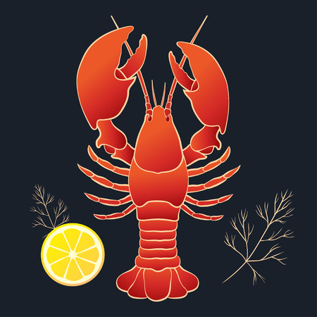 lobster: Lobster with lemon and dill on the black background. Vector illustration