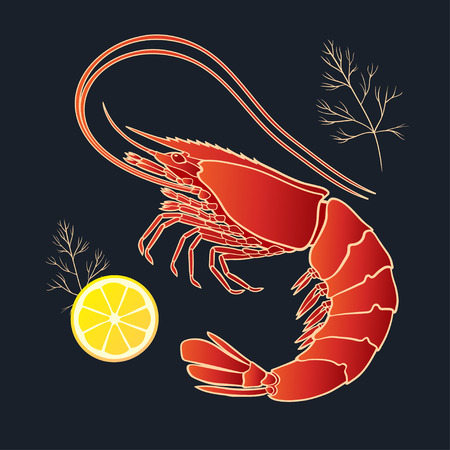 Shrimp with lemon and dill on the black background. Vector illustration