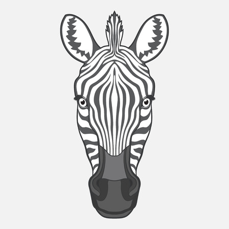 Zebra head. Isolated vector illustration. No gradients Illustration
