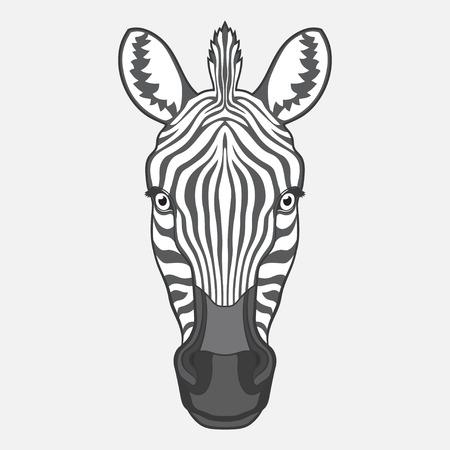 zebra heads: Zebra head. Isolated vector illustration. No gradients Illustration