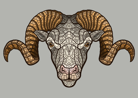 isolated animal: Ram head isolated. illustration ideal for a mascot and T-shirt graphic.