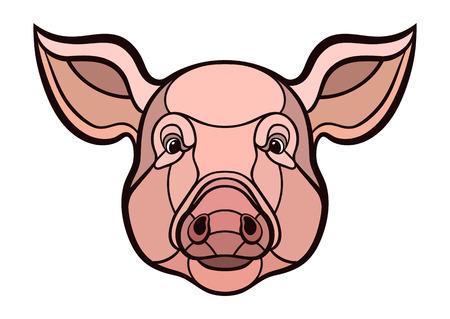 Pig head. Çizim