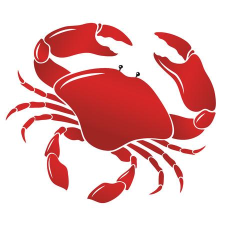 Vector boiled red crab, shellfish.