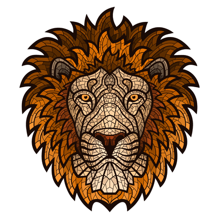 Ethnic patterned ornate hand drawn head of Lion. Ilustrace