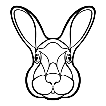 rabbit ears: Head of a rabbit, hare isolated drawing illustration. It may used for tattoo or coloring book
