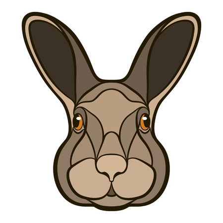 Head of a rabbit, hare isolated colour illustration