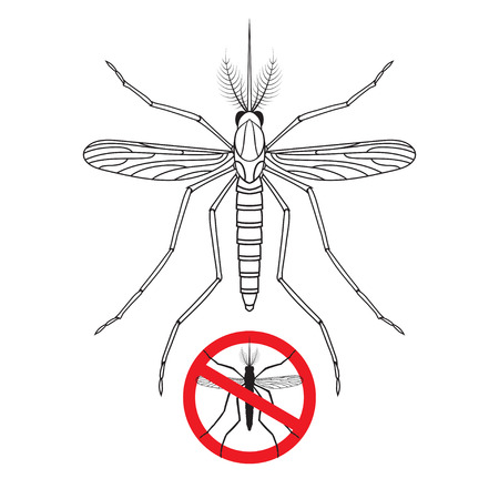 no mosquito: Mosquito and No mosquito prohibition sign silhouette isolated on white background. Vector illustration
