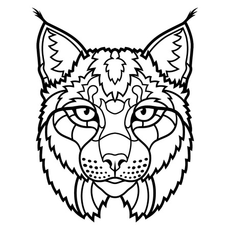 predators: Wildcat lynx mascot head sketch line art. Vector illustration Illustration