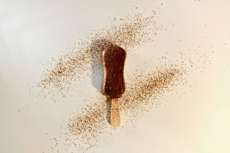 Chocolate ice creamon a stick. Sprinkled with cocoa. On a light background. View from above.