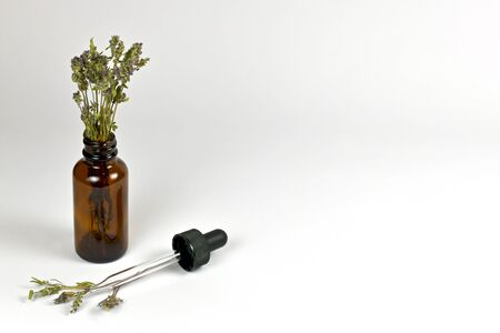 Glass bottle of dark glass with a bouquet of dried herbs thyme. Next to the pipette and the stems growing from it. On a light background from the left edge. Top view from the front.