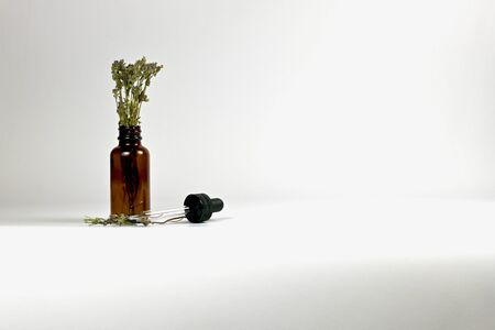 Glass bottle of dark glass with a bouquet of dried herbs thyme. Next to the cap-pipette and stems sprouting from it. On a light background from the left edge. On the right - free space. Front view.
