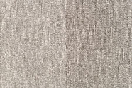 Paper background, imitating linen, with vinyl elements. Divided vertically in half. Light and darker. Neutral gray.