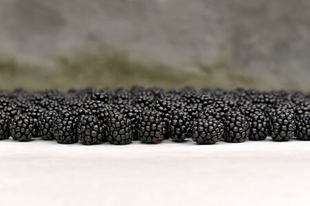 The background of the blackberries line in sharpness scattered on the surface, on a blurred background of greenery.