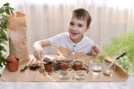 A child is busy planting seeds in pots. A boy openly smiles cheerfully spilling seeds for planting.