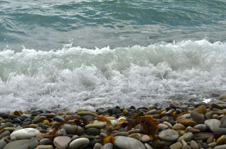 Sea wave of turquoise color with foam, coming to the coast with pebble stones and throwing brown algae out of the sea.