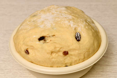 A large bowl with a dough with raisins. Yeast fermentation. On a light table.