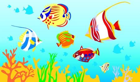 arrecife: Peces, un fondo de mar, Océano  Vectores