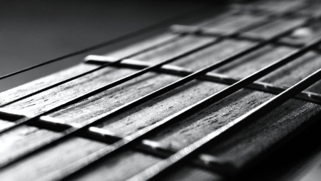 Strings of a Guitar photo