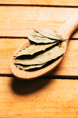 bay leaf: bay leaf in a light wooden spoon close up. Stock Photo