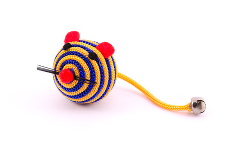 raton: Pet primer juguete aislado sobre fondo blanco