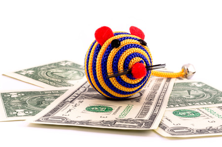 Toy mouse with money photo