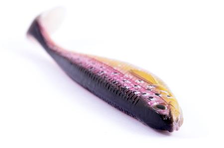 silicone: Silicone Fish