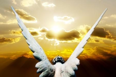 天使 版權商用圖片 - 11535331