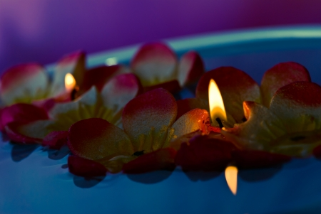 floating candles photo