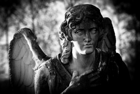 weeping angel: guardian angel