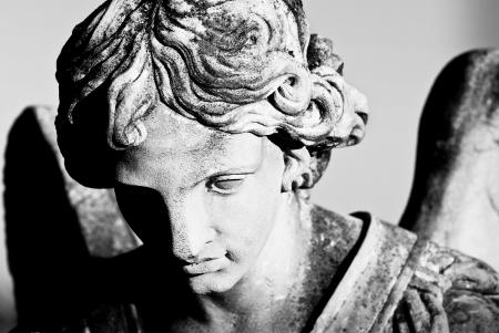 天使的面孔 版權商用圖片 - 17431768