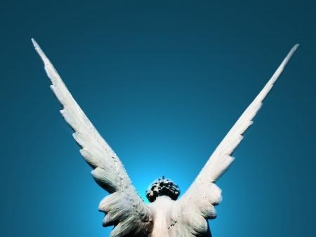 守護天使的翅膀