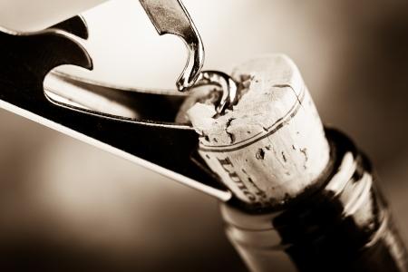 品酒 版權商用圖片 - 19552591