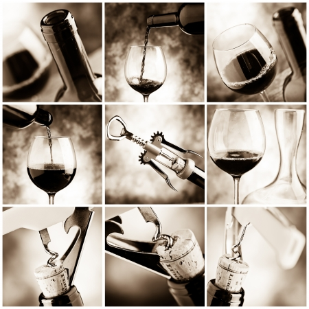 wine: wine tasting Stock Photo