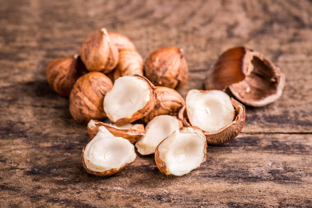 hazelnuts: hazelnuts Stock Photo