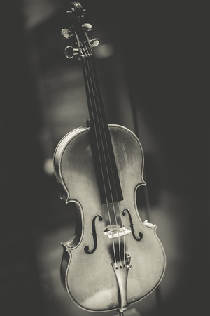 stradivarius: antique violin