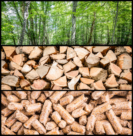 wood pellet production Stock Photo