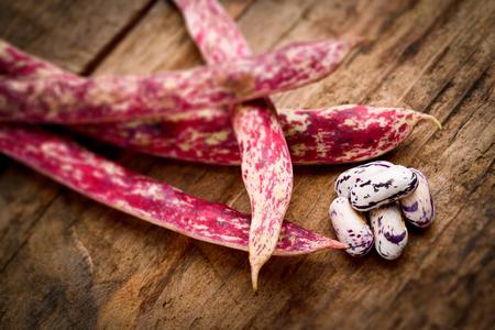 borlotti beans: borlotti beans - tilt shift selective focus effect photo Stock Photo