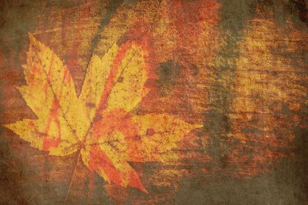 autumn leaf on wooden background - vintage style