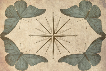 compass with butterflies vintage style