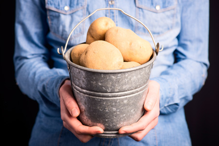 potatoes bucket in hands - vegetarian and vegan people