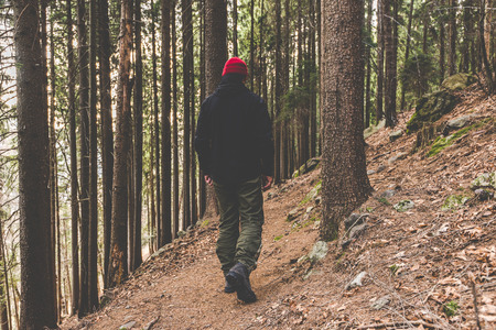 hiker walking on a mountain trail - wanderlust travel concept with sporty people at excursion in wild nature - outdoor activity italian Alps Italy
