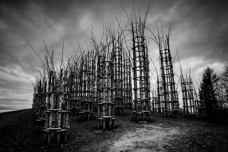 vegetable cathedral - black and white image 版權商用圖片