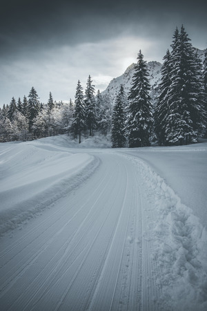 snowy trail mountain landscape - winter mood
